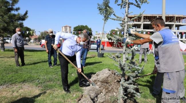 """Başkan Dr. Mustafa Palancıoğlu """"fidan değil, ağaç dikiyoruz''"""