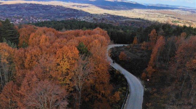 Bozcaarmut Göleti sonbahar renkleriyle görsel şölen sunuyor
