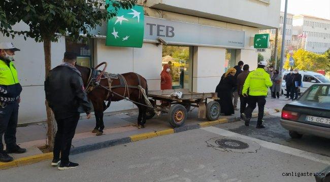 Edirne'de at arabasını kaldırıma park eden kişiye para cezası
