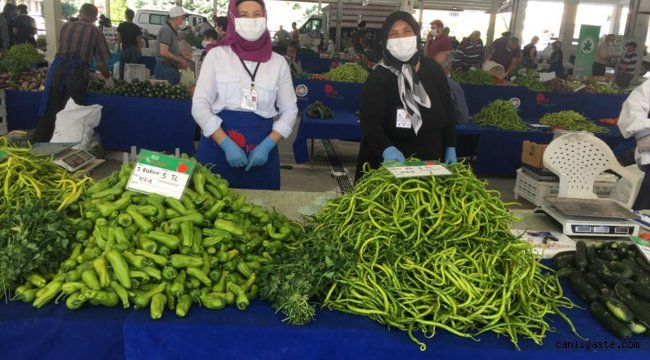 Kayseri'de çiftçiler ekolojik tarımla 722 bin lira gelir elde etti