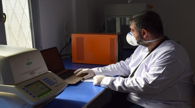 Barış Pınarı Harekatı bölgesine 5 PCR test laboratuvarı kuruldu