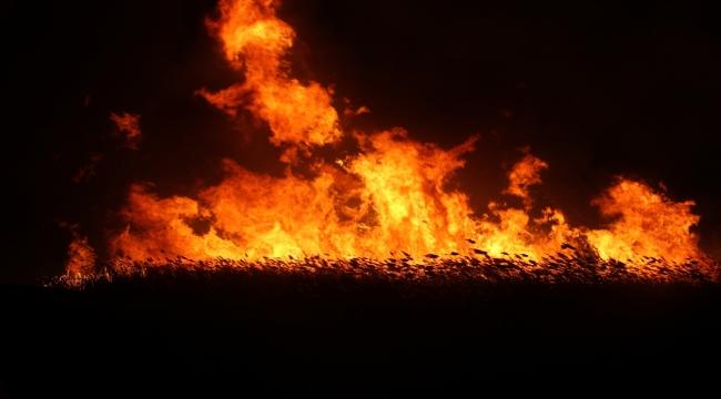 Beyşehir Gölü kenarındaki sazlık alanda yangın çıktı