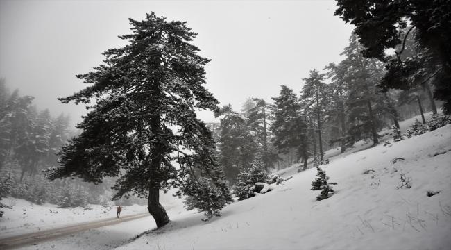 Bilecik'in yüksek kesimlerinde kar yağışı etkili oluyor