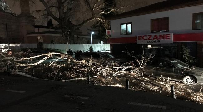 Bursa'da lodosun devirdiği çınar, park halindeki araçların üzerine düştü
