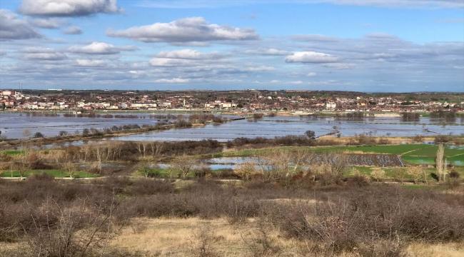 Ergene Nehri'nin taşması sonucu tarım arazileri su altında kaldı