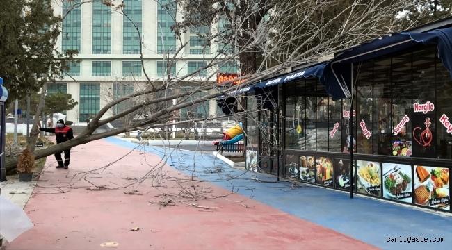 Kayseri'de fırtına, hayatı olumsuz etkiledi