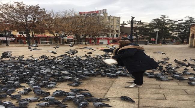 Kısıtlamada Kastamonu'nun tarihi meydanındaki kuşlar unutulmadı