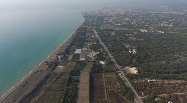 """Mersin'de Alata Sahili'nin """"kesin korunacak hassas alan"""" ilan edilmesi sevinci"""