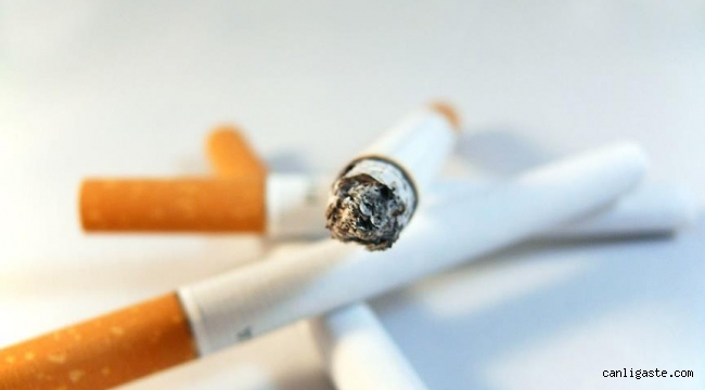 Sigara filtresi üreten firmalar kayıt altına alınıyor