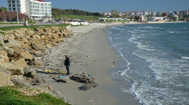 GÜNCELLEME - Çanakkale Boğazı'nda gemiden düşen denizcinin cesedi sahilde bulundu