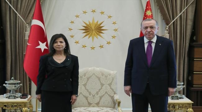 Arjantin Büyükelçisi Salas, Cumhurbaşkanı Erdoğan'a güven mektubu sundu