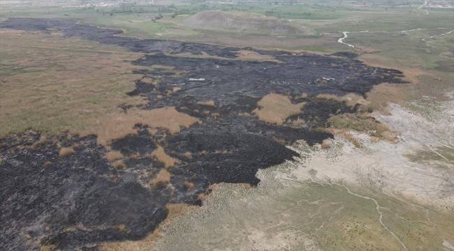 Erzincan'da koruma altında bulunan Ekşisu Sazlık Alanı'ndaki yangın söndü