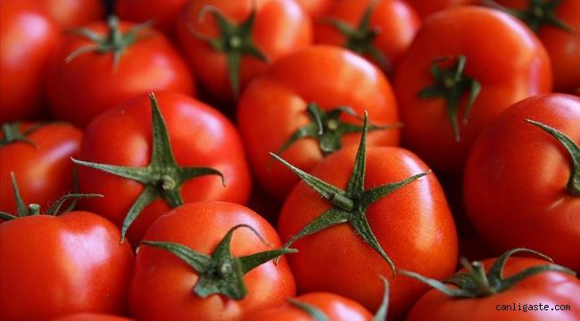 Kayseri'de nisan ayında fiyatı en fazla artan ürün domates oldu
