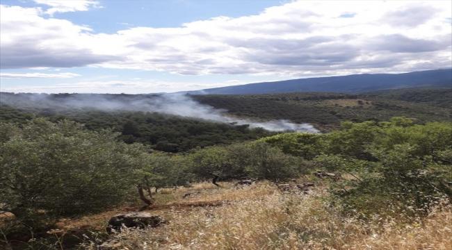 Balıkesir'de çıkan orman yangınına müdahale ediliyor