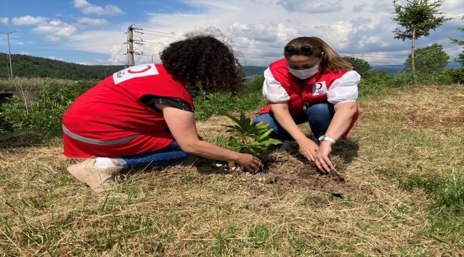 Düzce'de Kızılayın kuruluşunun 153. yılı anısına hatıra ormanı oluşturuldu
