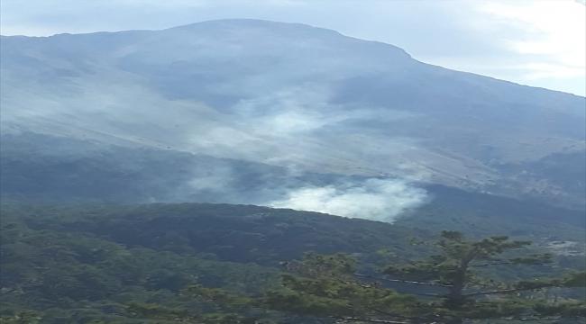 Fethiye'de çıkan orman yangınında 5 dekarlık alan zarar gördü