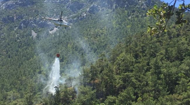 Muğla'da çıkan orman yangınında 3 dekarlık alan zarar gördü