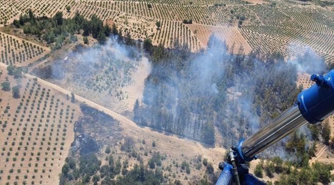 Denizli'deki orman yangınında 2 hektarlık alan zarar gördü