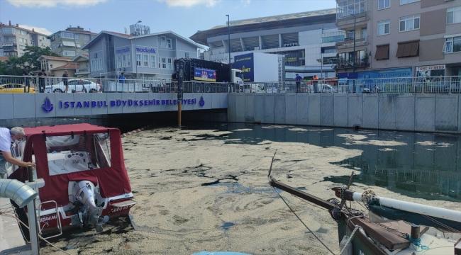 İstanbul'da müsilaj temizleme çalışmaları sürüyor