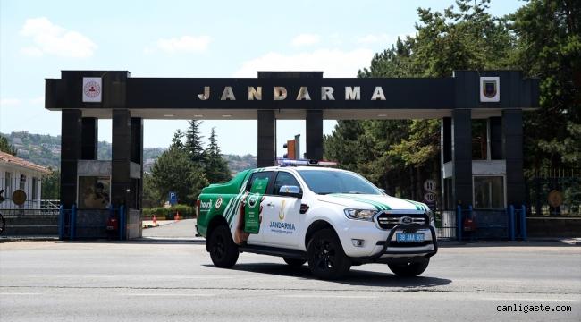 Kayseri'de jandarmanın özel timi çevre ve hayvanlar için mesaide